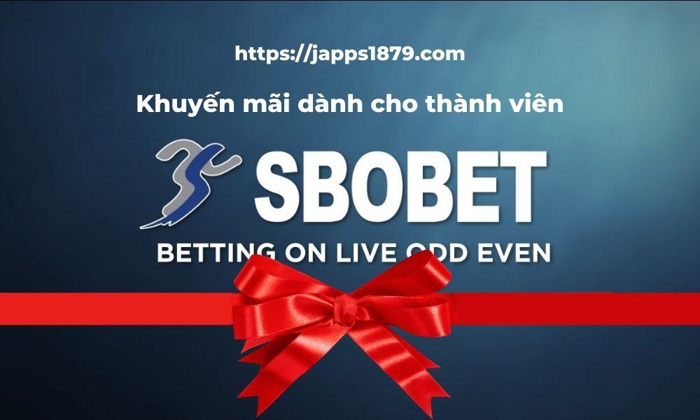 Khuyến mãi SBOBET dành cho thành viên
